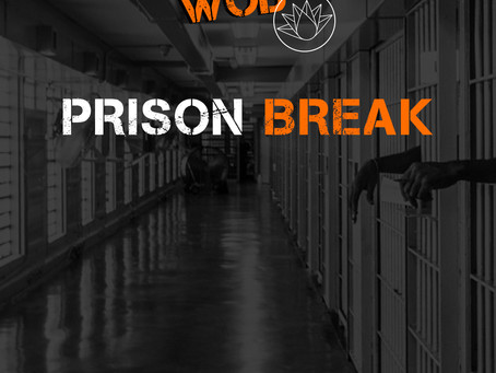 [osfose wod] prison break