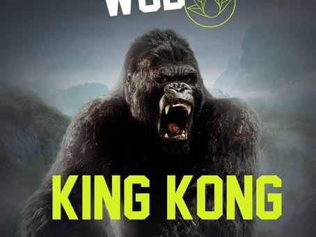 [Osfose wod] King kong
