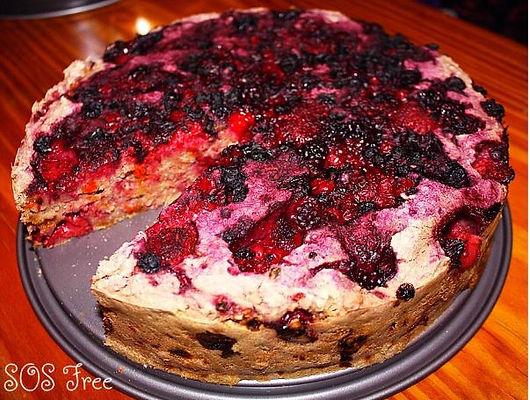 Berry Oat Cake.JPG