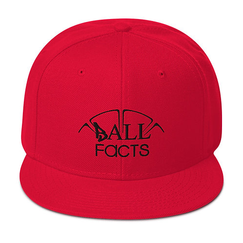Ball Facts Snapback Hat