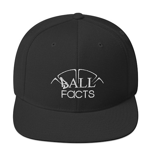 Facts Hat