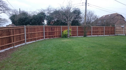 Rear of Close Board Fence in High Halstow Kent