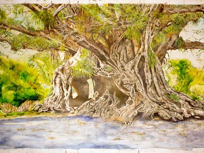 b Banyon Tree COLOR.jpg