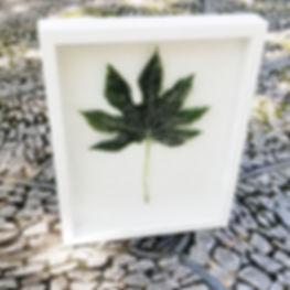 Glass-leaf(1).jpg