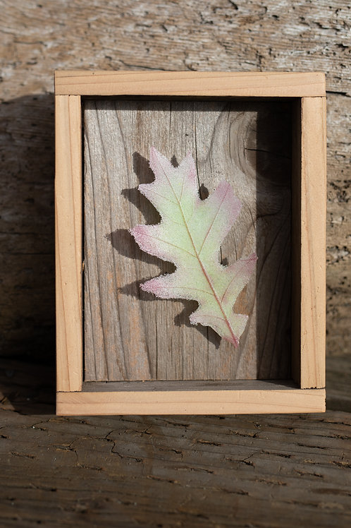 Glass Oak Leaf