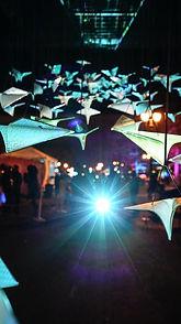 Flight-portland-winterźlights-festival.j