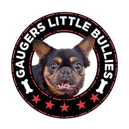 gaugers-little-bullies-Toto-logo-10-10-2021.jpg