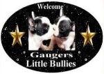Gaugers-Little-Bullies-logo-2021_edited.jpg