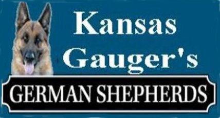 Gaugers German Shepherd logo 2021.jpg