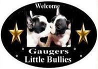 Gaugers-Little-Bullies-logo-2021_edited_