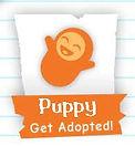 gaugers-little-bullies-adopted-logo.jpg
