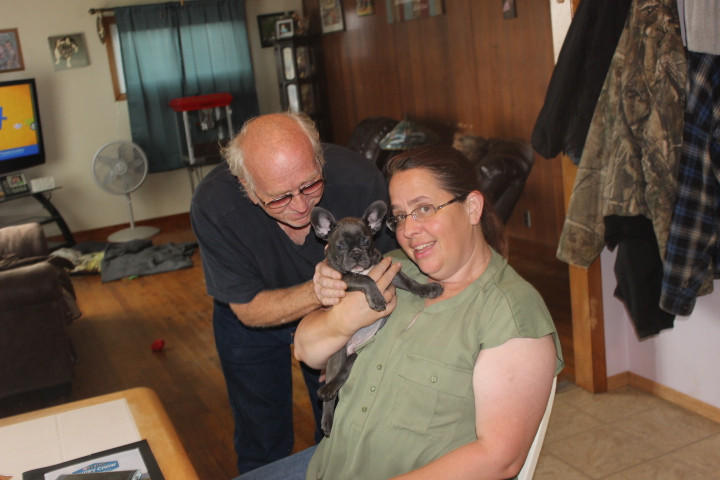 french bulldog puppy for sale near Easto