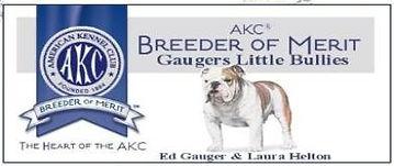 Gaugers_little_Bullies_breeder_logo-390x