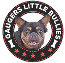 gaugers-little-bullies-Toto-logo-10-10-2021_edited.png