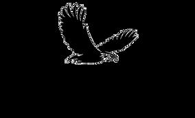 Eagle X Pro.png