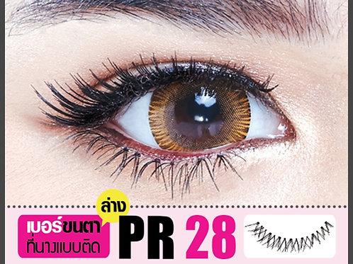 ขนตาล่าง (Lower) PR28