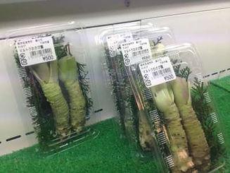伊豆 わさび B級グルメ ~伊豆 下田 おすすめお土産~