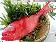 お夕食には金目鯛の煮付けなども付く和洋折衷お料理です。