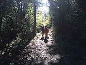 晴れた天気の日には木漏れ日が気持ちよく、森林浴・ハイキング気分を堪能できます。
