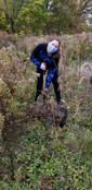 Madison Planting tree.jpeg