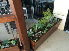 planter-box-1-adjusted.jpg
