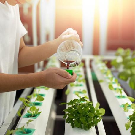 15-Organic-Liquid-Fertilizer-Recipes-Liq