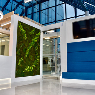 Moss Wall & Waiting Area.jpg