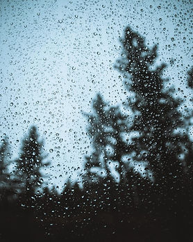 pexels-photo-1166991_edited.jpg