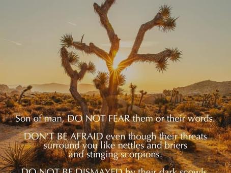 Do Not Fear!