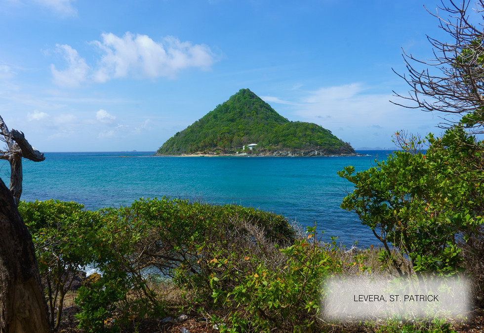 view from Levera property for sale grenada.jpg