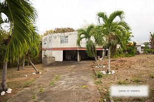 Land for sale old house simon st andrew grenada 6.jpg