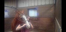 Craniosacral equine Therapy