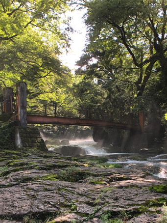 Copy of Kikuchi Gorge Bridge_edited.jpg