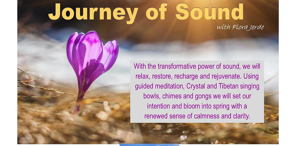 Guided Meditation with Journey of Sounds