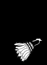 logo_bls copie.png