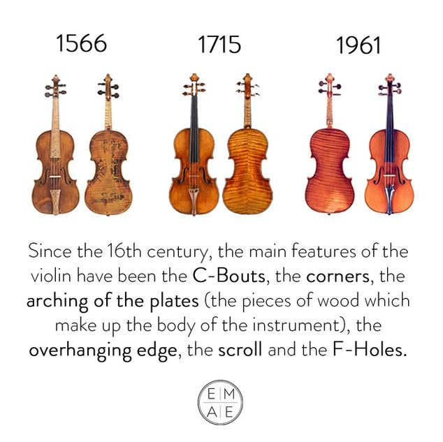 Violin Main features 16th century