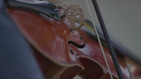 Violin Viola Cello Double Bass Concert Liverpool