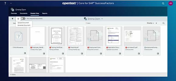 SAP SuccessFactors.png