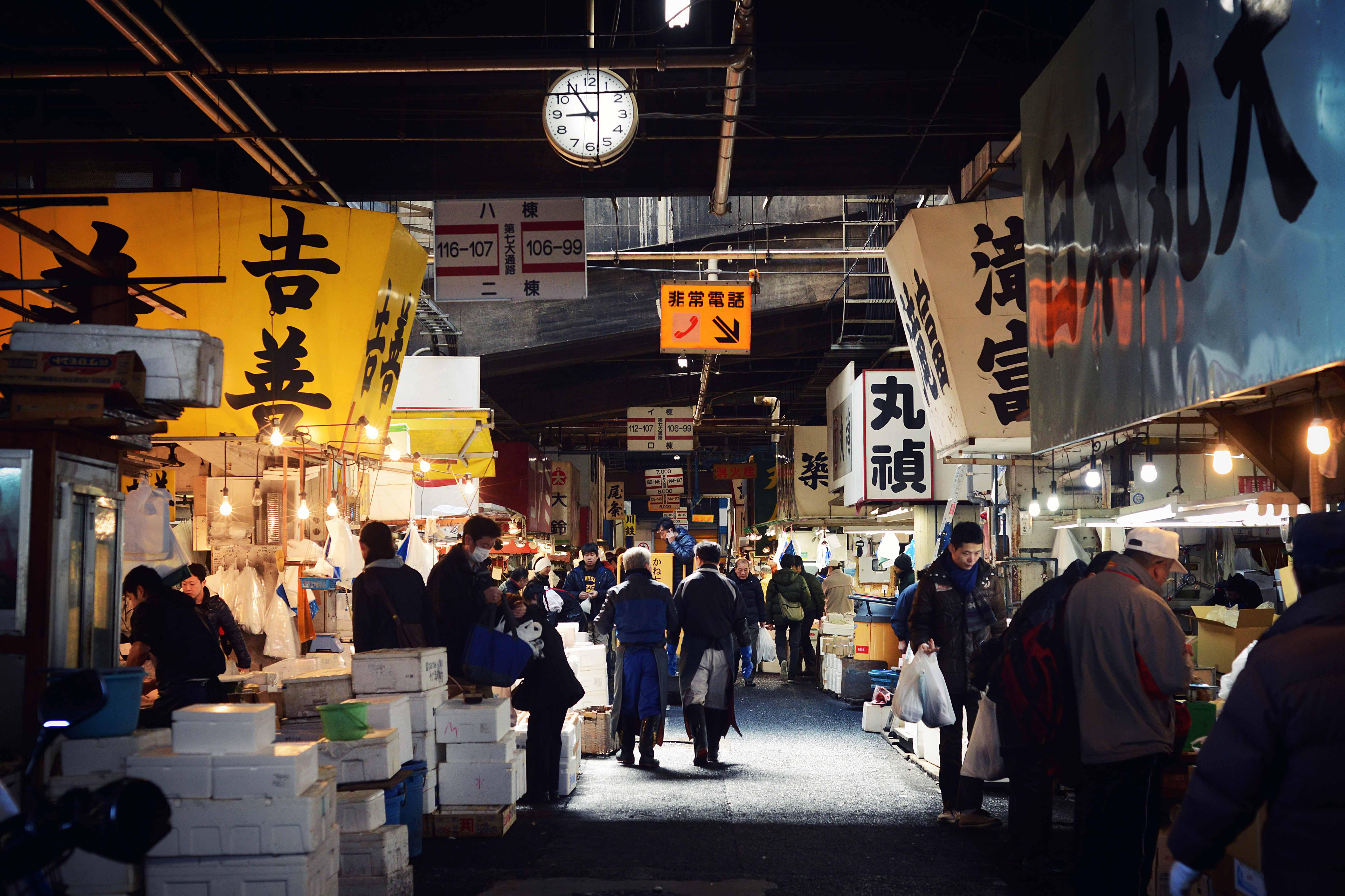 Fish market,Tokyo, Japan