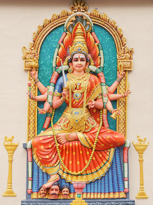 Divine Devi Blessings Token