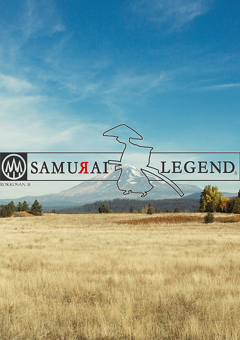 samurai_edited.jpg