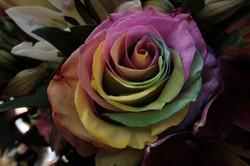 Colour Combos Weddings12.JPG