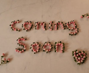 Coming Soon (2).JPG