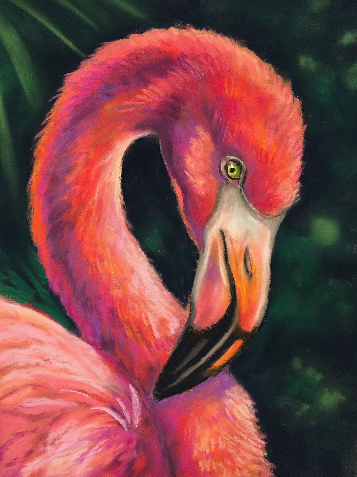 Flamingo Pastel Workshop with Susan Long