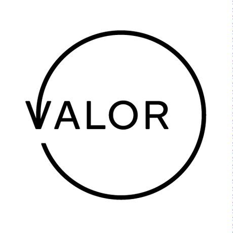 WEB_20171211_Valor_Logo_monochrome.png