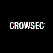 logo crowsec.png