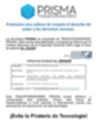 Texto Proteccion PATENTE 2.jpg