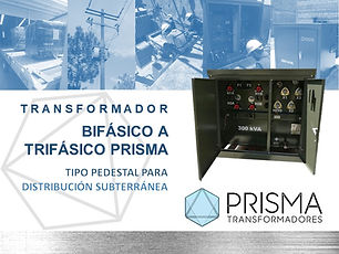 PRISMA Pedestal 2020.jpg
