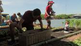 TAR3210_Cambodia_Will.James.Chee.Hung_04