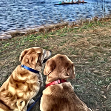 Best Friends on the Charles